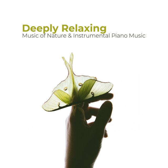 Deeply Relaxing Music of Nature & Instrumental Piano Music