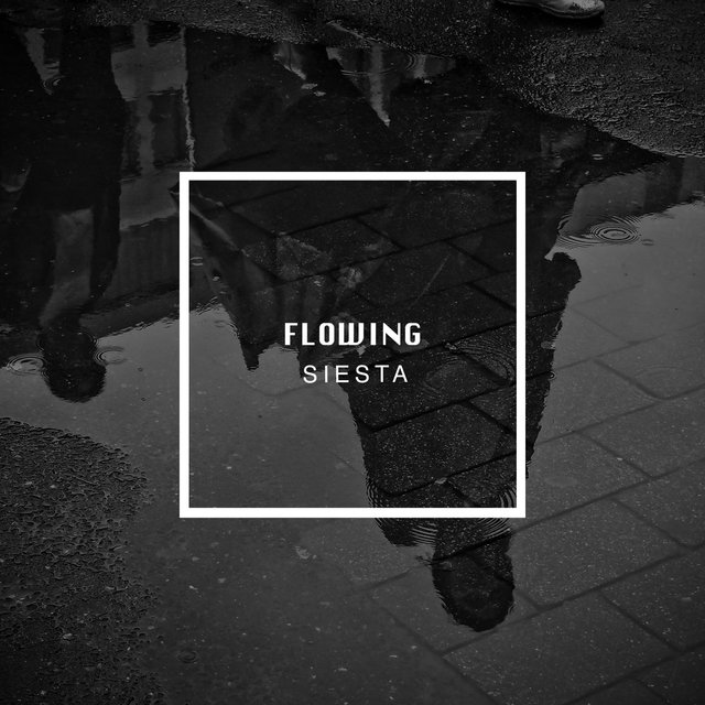 # 1 Album: Flowing Siesta