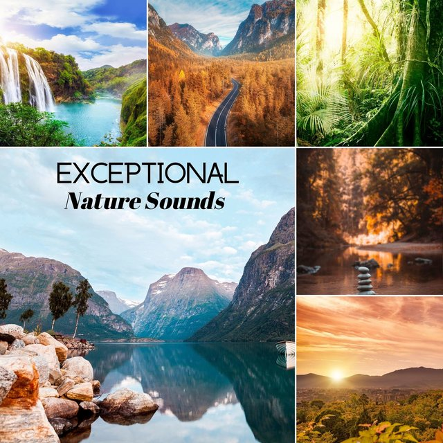 Exceptional Nature Sounds