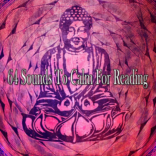 64 Sounds to Calm for Reading