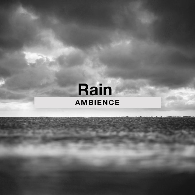 Soothing Rain Background Ambience