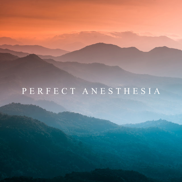 Perfect Anesthesia: Healing Nature Sounds for Fatigue, Anxiety and Depression