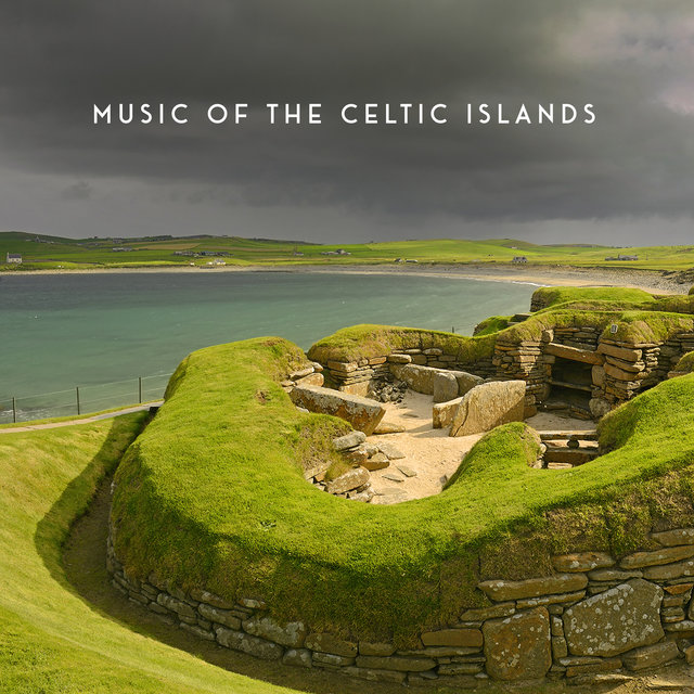 Music Of The Celtic Islands: Irish Instrumental Music