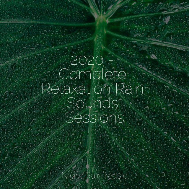 2020 - Complete Relaxation Rain Sounds Sessions