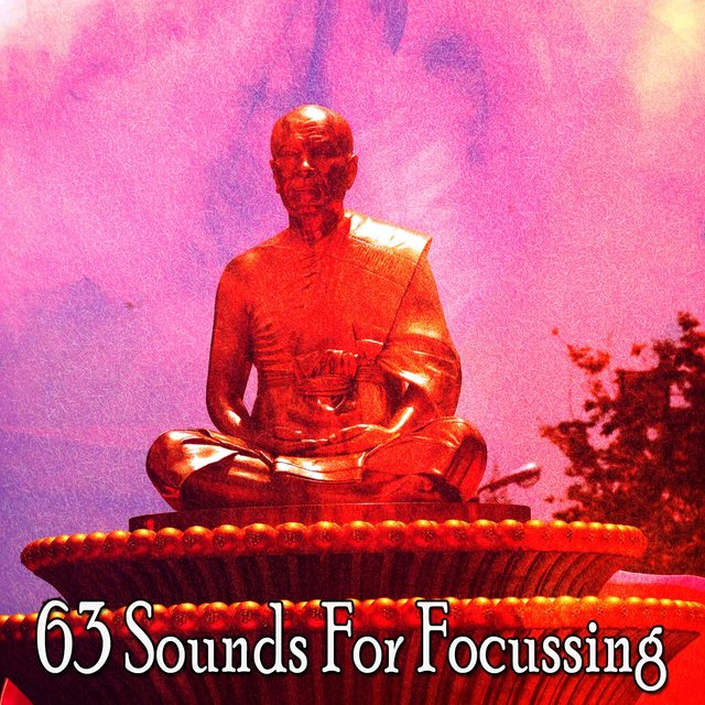 63 Sounds for Focussing
