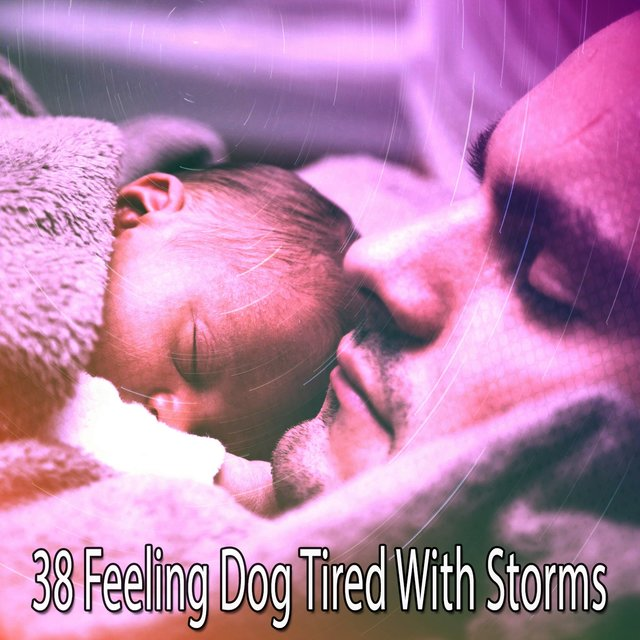 38 Feeling Dog Tired with Storms