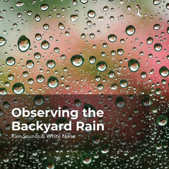 Observing the Backyard Rain