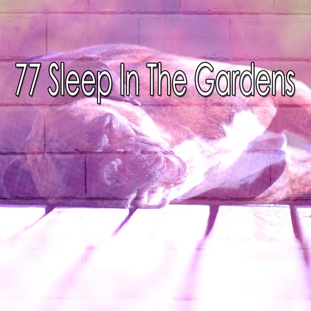 77 Sleep in the Gardens