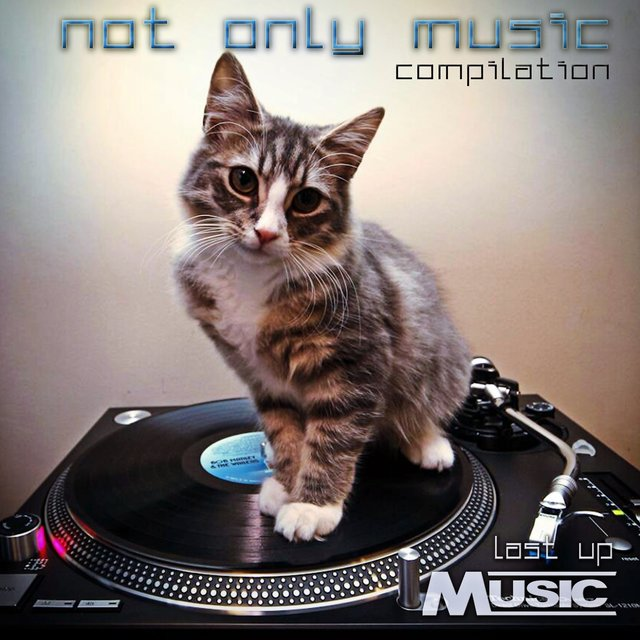Not Only Music Compilation