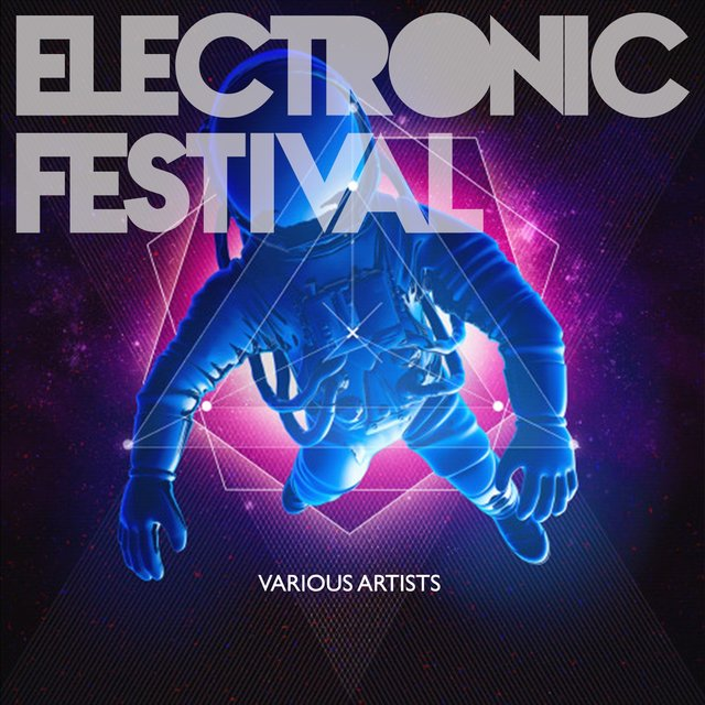 Electronic Festival