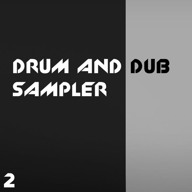 Drum And Dub Sampler, Vol. 2
