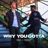 Why You Gotta (feat. Peaceley)
