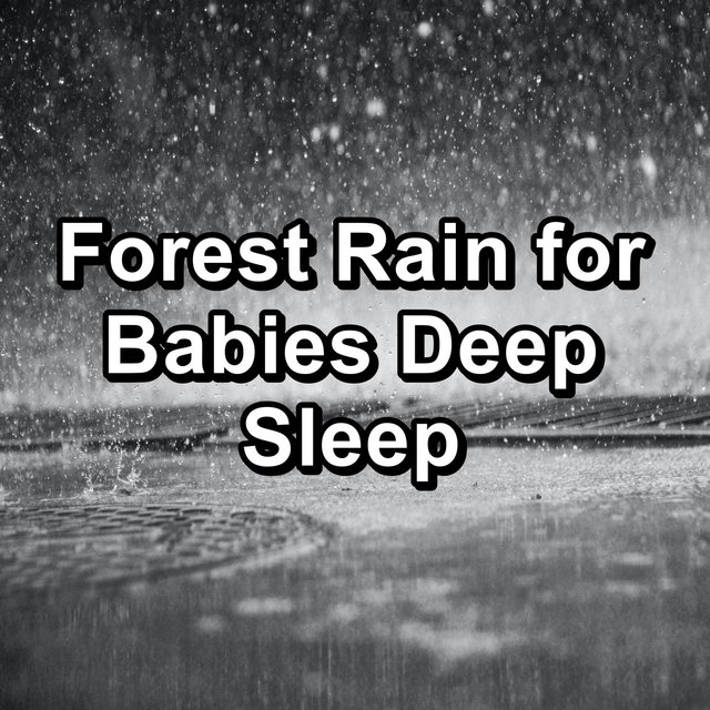 Forest Rain for Babies Deep Sleep