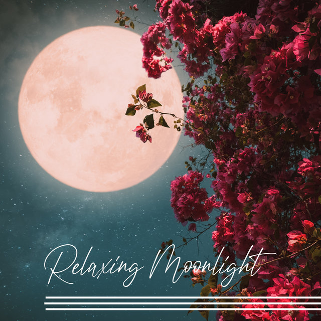 Relaxing Moonlight - Restful Time, Perfect Chill Mood After Long Day, Night Sounds, Jazz Music