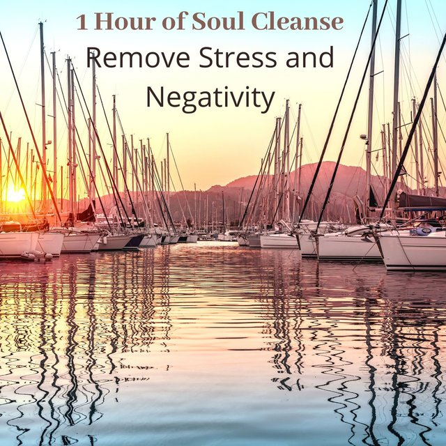 1 Hour of Soul Cleanse: Remove Stress and Negativity, Sleep Meditation Healing Music