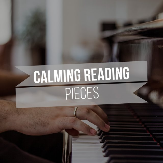 """ Calming Reading Piano Pieces """
