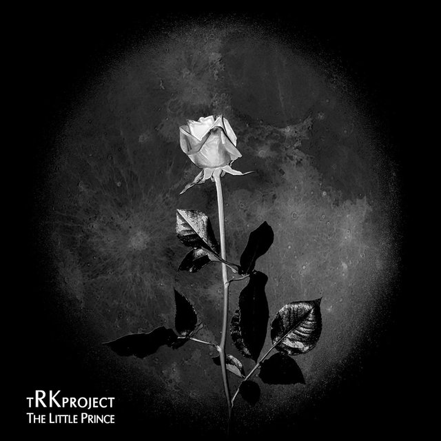 Cover art for album The Little Prince by tRKproject