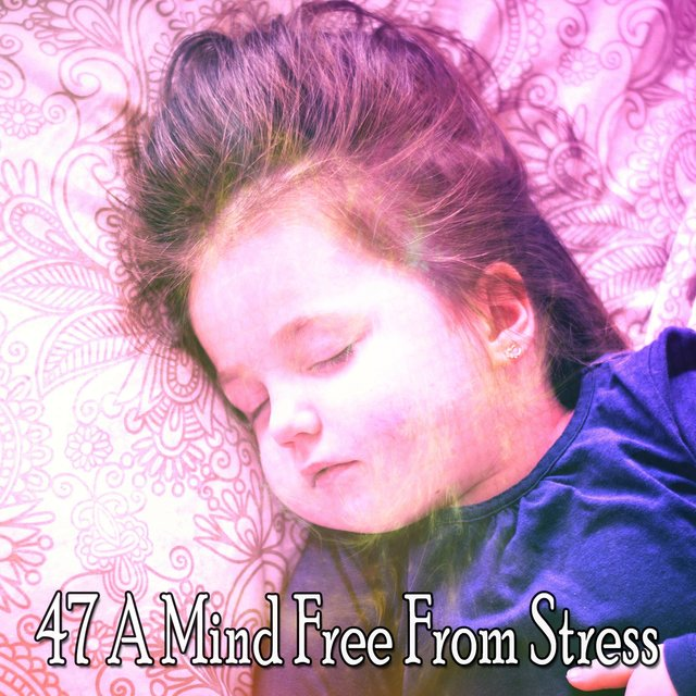 47 A Mind Free from Stress
