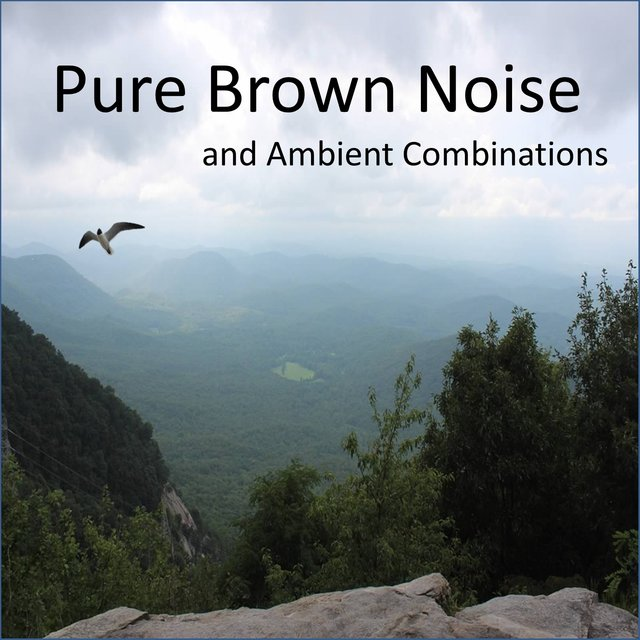 Pure Brown Noise and Ambient Combinations, including Clothes Dryers, Waterfalls, Crickets