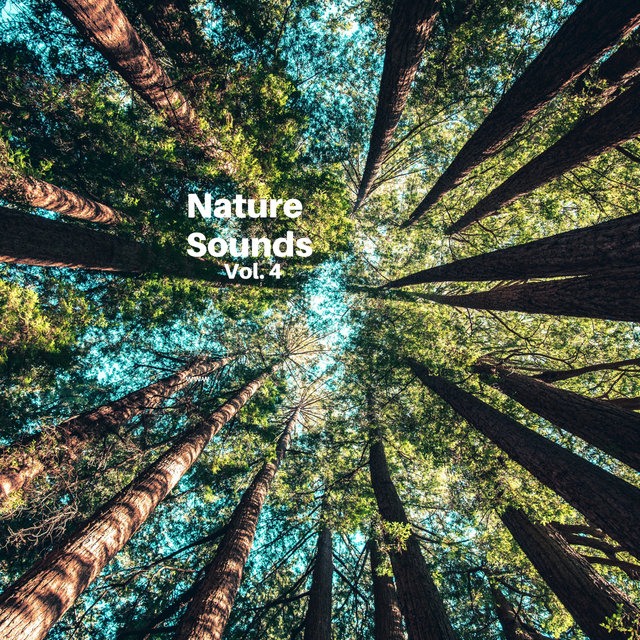 Nature Sounds Vol.4, Nature Music to Sleep