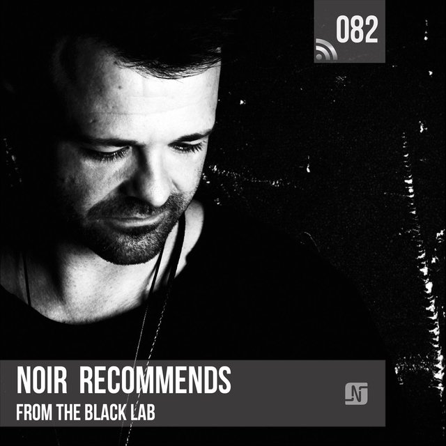 Noir Recommends 082: From the Black Lab