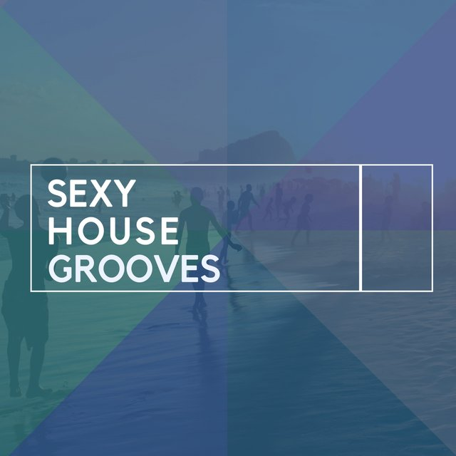Sexy House Grooves
