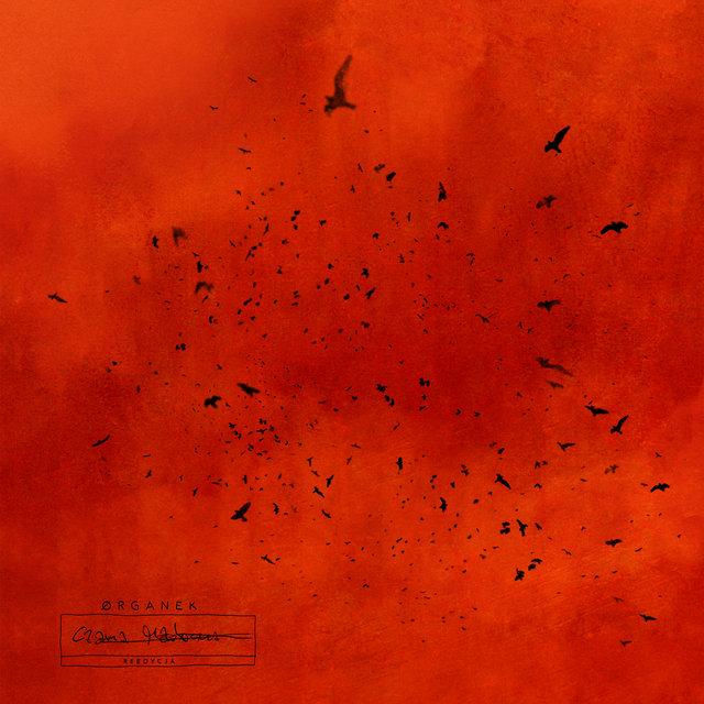 Cover art for album Czarna Madonna - Reedycja by Organek