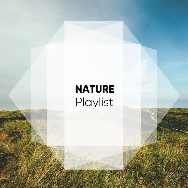 Mellow Native Nature Playlist