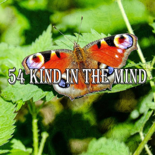 54 Kind in the Mind