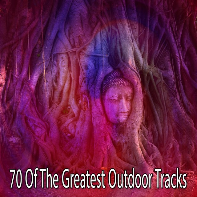 70 Of the Greatest Outdoor Tracks