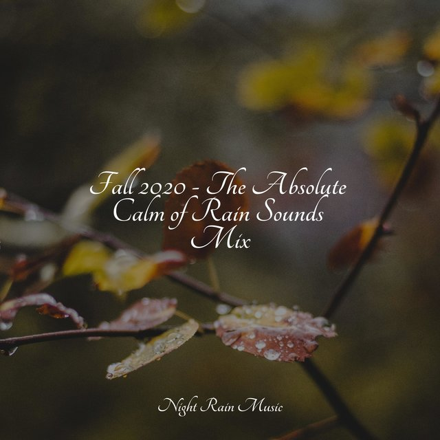 Fall 2020 - The Absolute Calm of Rain Sounds Mix