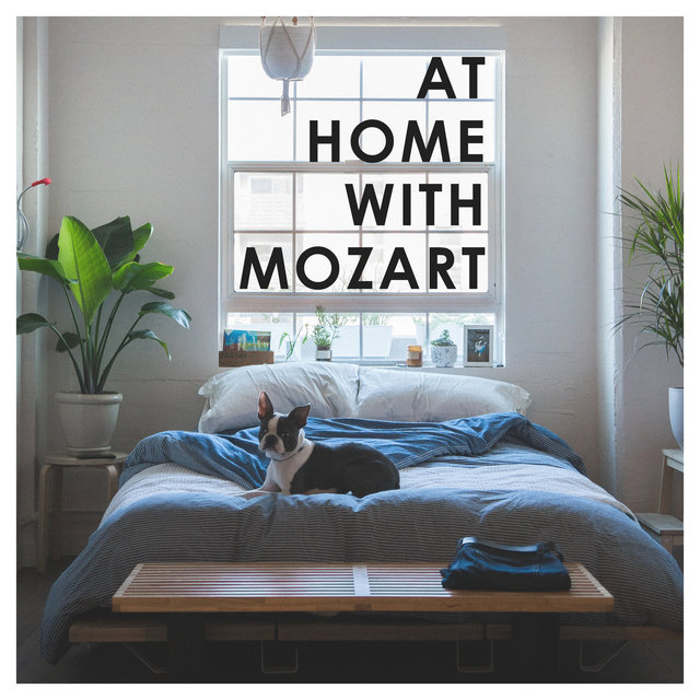 At Home with Mozart