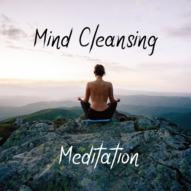 Mind Cleansing Meditation: Reset Your Mind, Be More Mindful and Clear-Headed