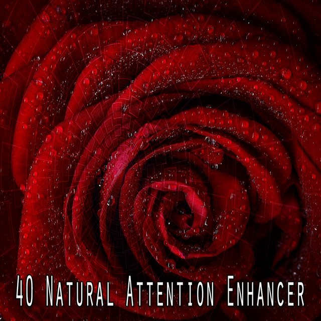 40 Natural Attention Enhancer