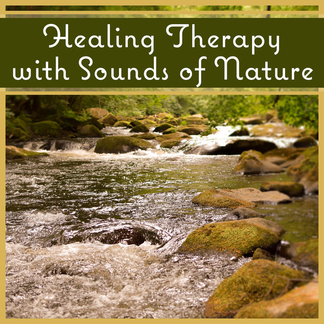 Healing Therapy with Sounds of Nature: Soothing Soundscapes for Sleep and Relaxation (Birds, Ocean Waves, Waterfalls, Rain)