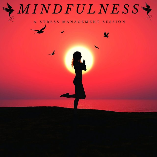 Mindfulness & Stress Management Session: Calming Music for Meditation, Stress Relief, Evening Yoga