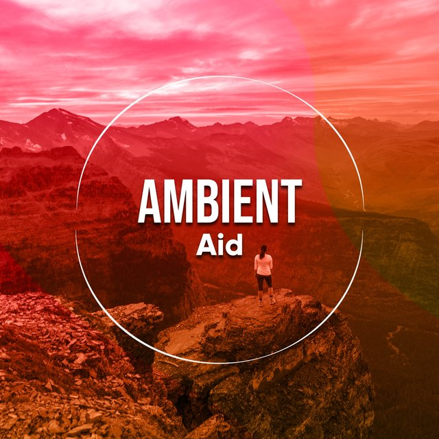 Ambient Aid