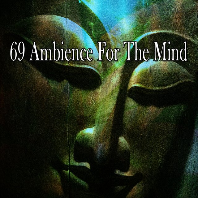 69 Ambience for the Mind