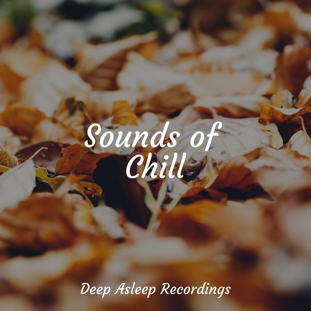 Sounds of Chill