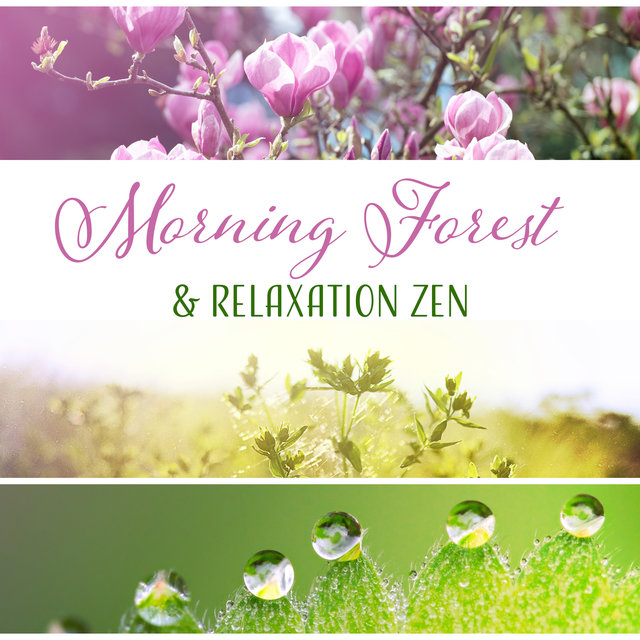 Morning Forest & Relaxation Zen - The Best Nature Sounds for Yoga, Meditation, Spa