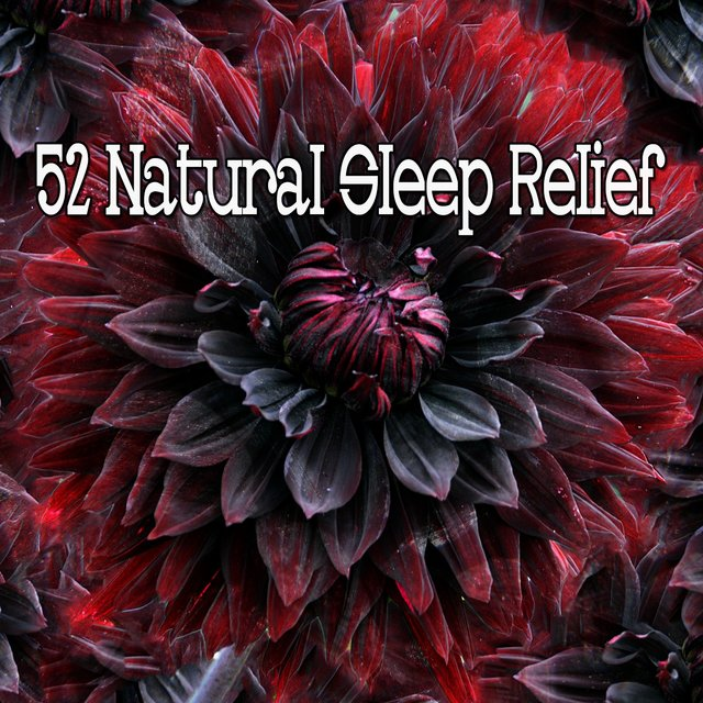 52 Natural Sleep Relief