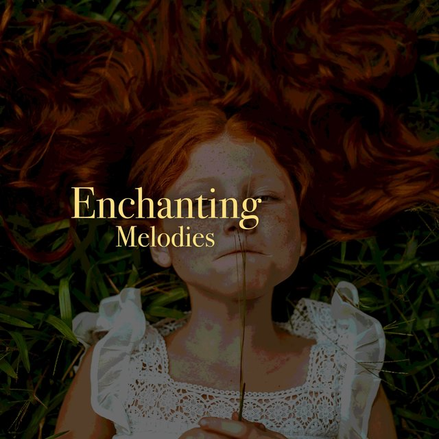 # 1 Album: Enchanting Melodies