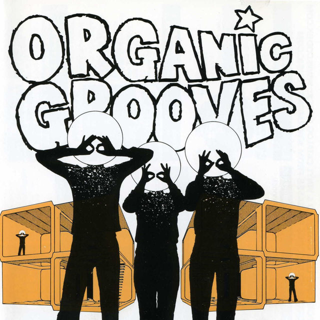 Organic Grooves 4: Live in Nyc