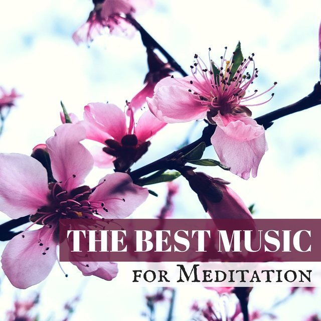 The Best Music for Meditation - Indian Meditation Music for Spiritual Healing