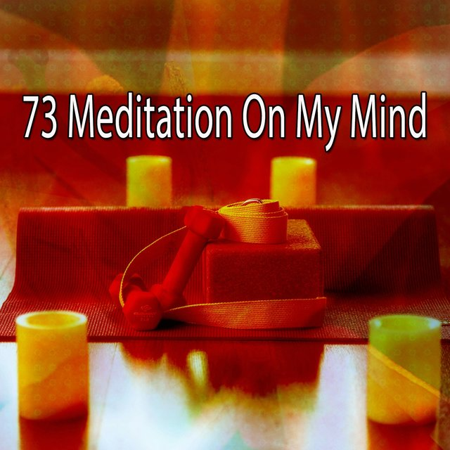 73 Meditation on My Mind