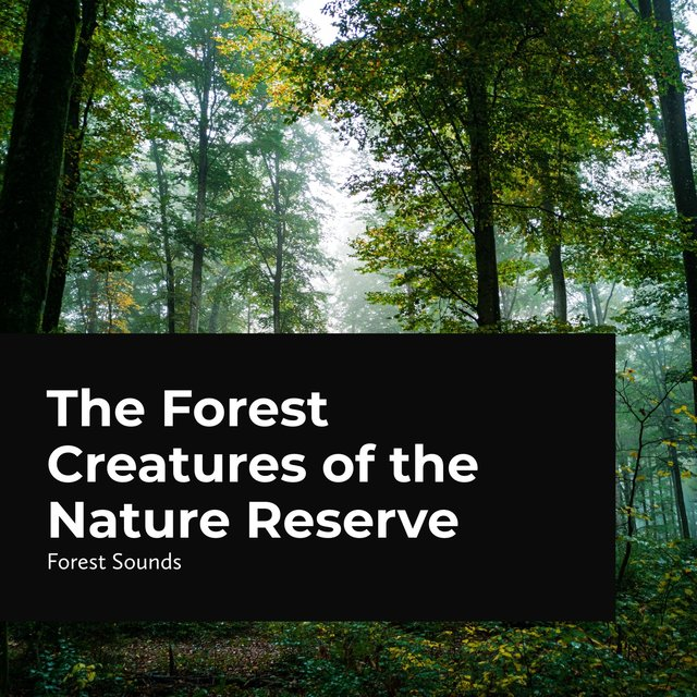 The Forest Creatures of the Nature Reserve
