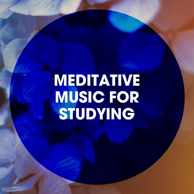 Meditative Music for Studying