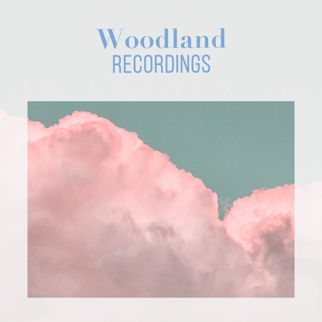 Soft Natural Woodland Recordings