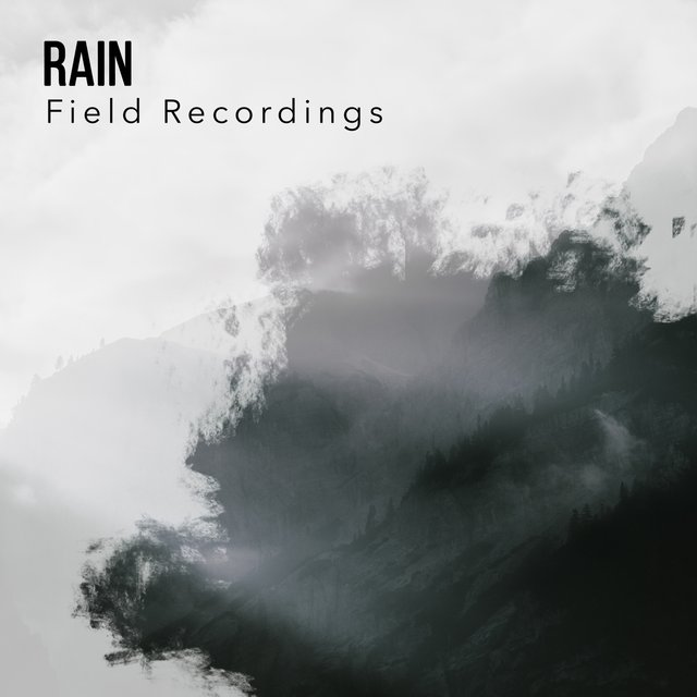 Mellow Rain & Water Field Recordings