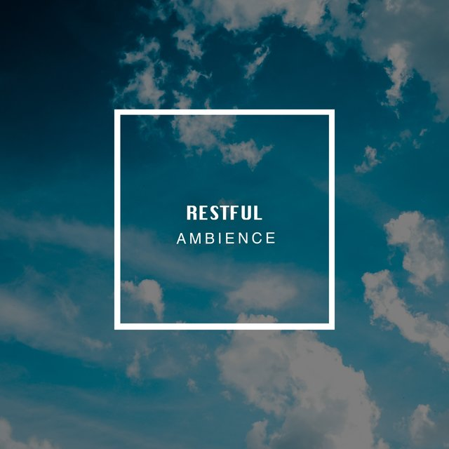# 1 Album: Restful Ambience